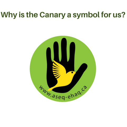 Why a canary?